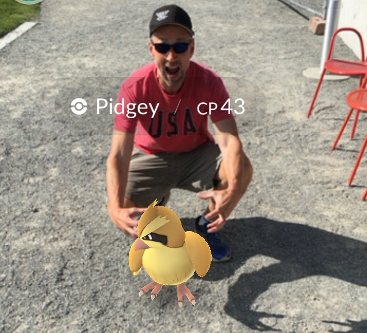 Chasing Pidgey